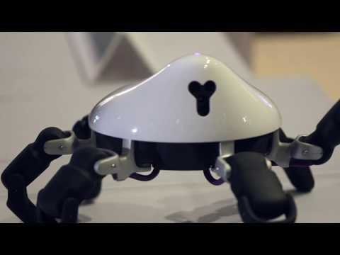 Video thumbnail of HEXA