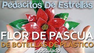 Flor De Pascua Con Botellas De Plástico. Tutorial Manualidades Recicladas (subtitulado)