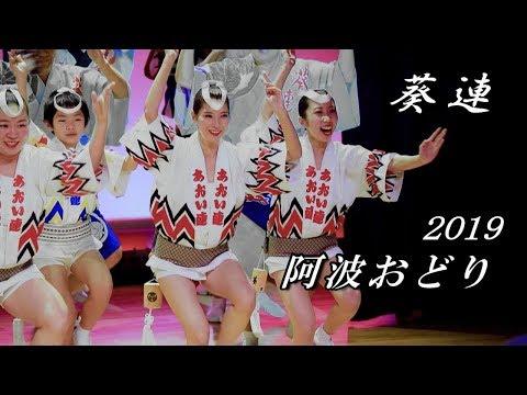 阿波おどり 2019 新春特別公演 ♪ 葵連