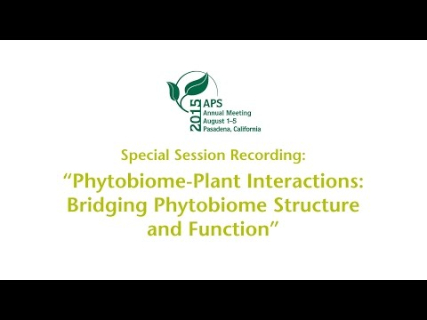 Phytobiome-Plant Interactions: Bridging Phytobiome Structure and Function Part I