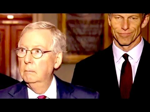 Mitch McConnell's Response To Trump Question Is Actually Funny To Watch