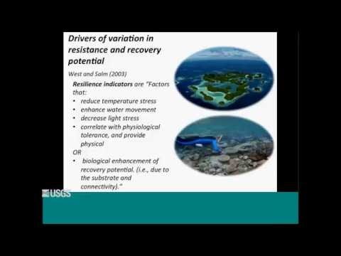 Resilience Potential of Coral Reefs in the Mariana Islands