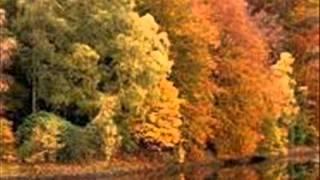 Antonio Vivaldi Autumn   Otoño 1 Allegro