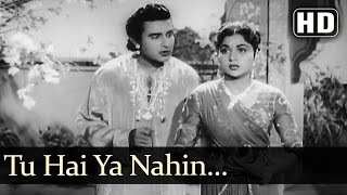 Tu hai Ya Nahin - Manhar Desai - Nirupa Roy - Janam Janam Ke Phere - Old Hindi Song