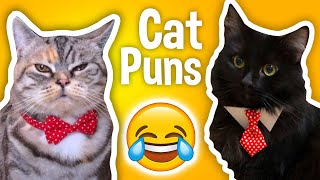 Paw-ful Cat Puns - So Bad They're Good!
