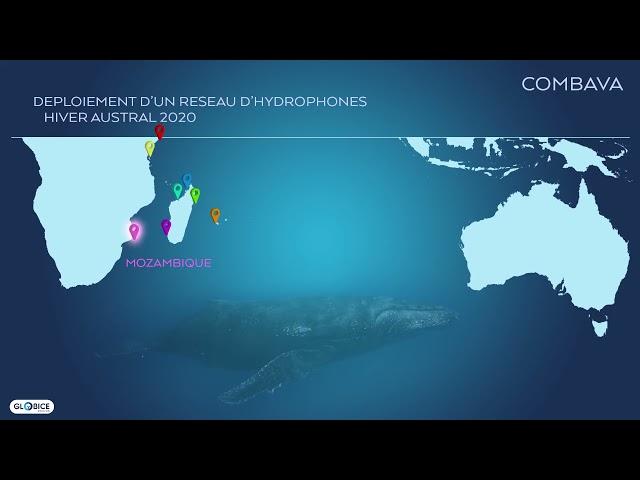 Déploiement d'un réseau d'hydrophones dans l'océan indien