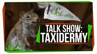 Learn To Taxidermy | SciShow Talk Show