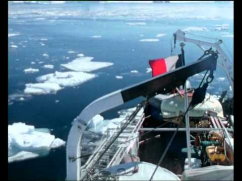 ·• Free Watch Jacques Cousteau's Voyage to the Edge of the World