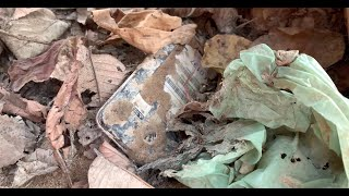 Restoration smart phone destroyed abandoned | Restore old cell phone Huawei Y3 II | 4 Years Ago