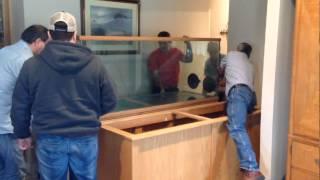 Lessons in Moving a Large Aquarium