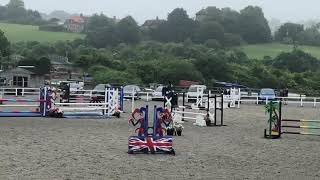 Christo 16.1hh stallion by renkum