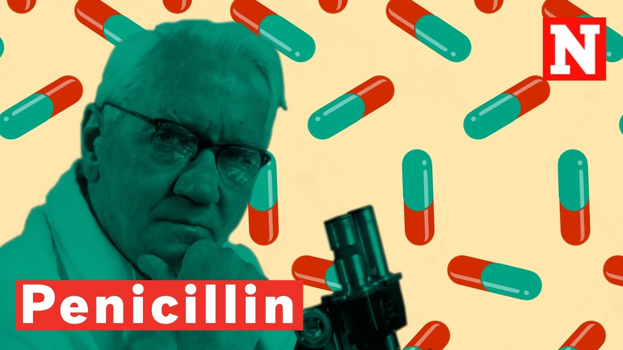 Download How Penicillin Changed The World