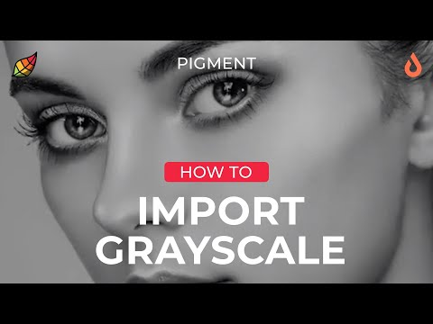 Tutorial: Importing Greyscale s in the Pigment Coloring App