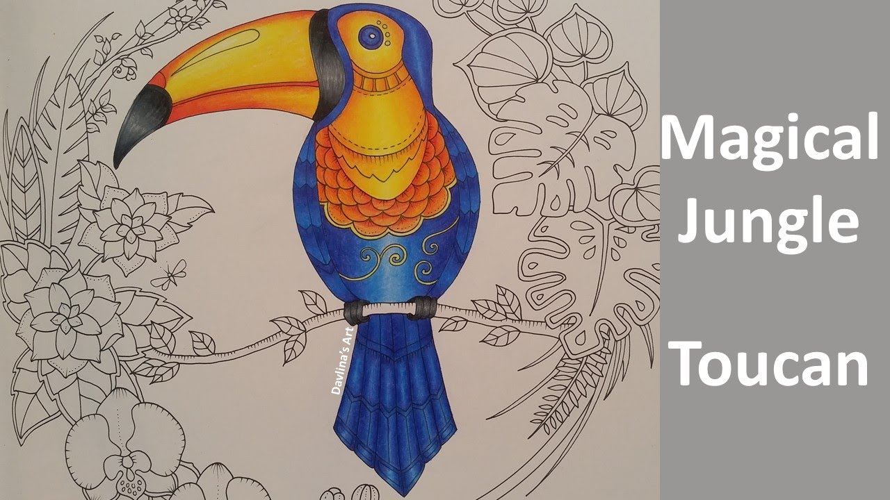 magical jungle color along of the toucan part 1 coloring