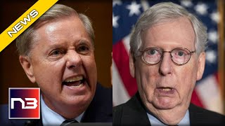 Lindsey Graham Has BRUTAL Message for Anti-Trump RINOS