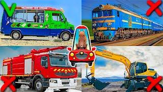 Транспорт для Детей. Машинки и Спецтехника для Самых Маленьких. Тесты для Малышей