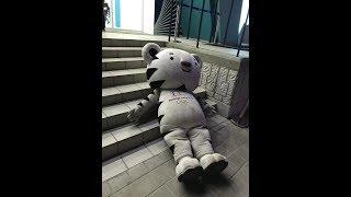 2018 평창 올림픽: 수호랑 술취했어요! 2018 PyeongChang Winter Olympics: Mascot SooHoRang is exhausted