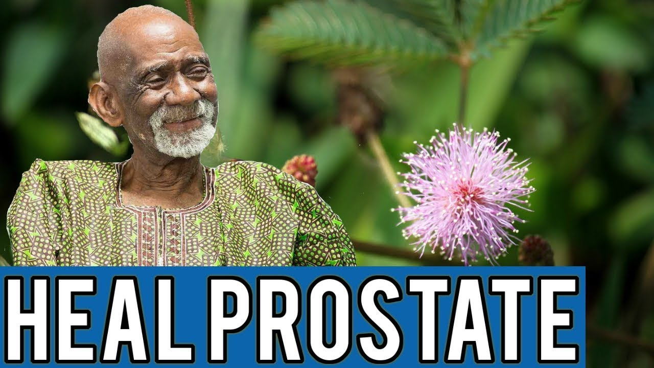 Dr Sebi - Natural Herbal Remedy For Prostate Cancer And ED