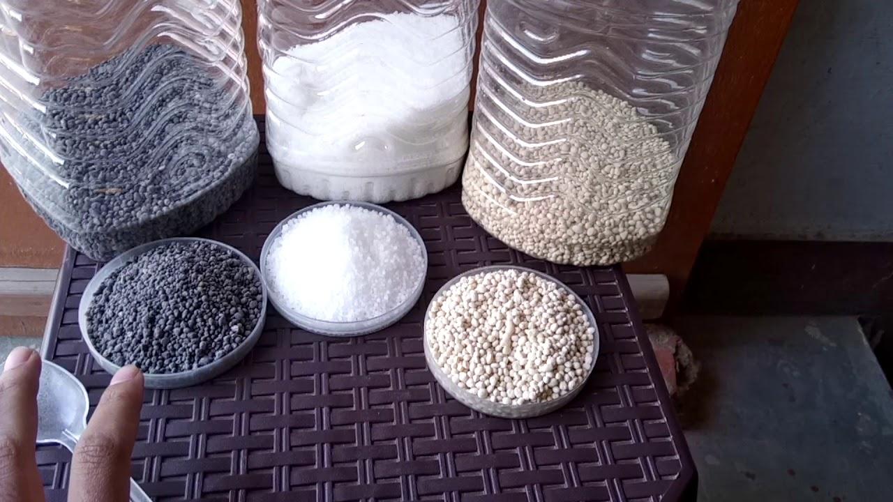 All inorganic fertilizer   what is DAP, urea, and NPK fertilizer in hindi