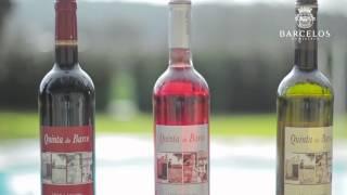 Rota dos Vinhos de Barcelos