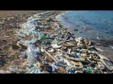 l'environnement et la pollution