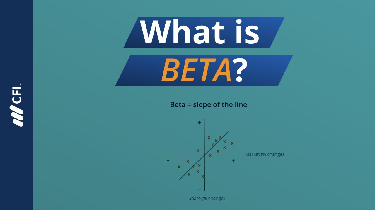 in investment decision beta refers to the type