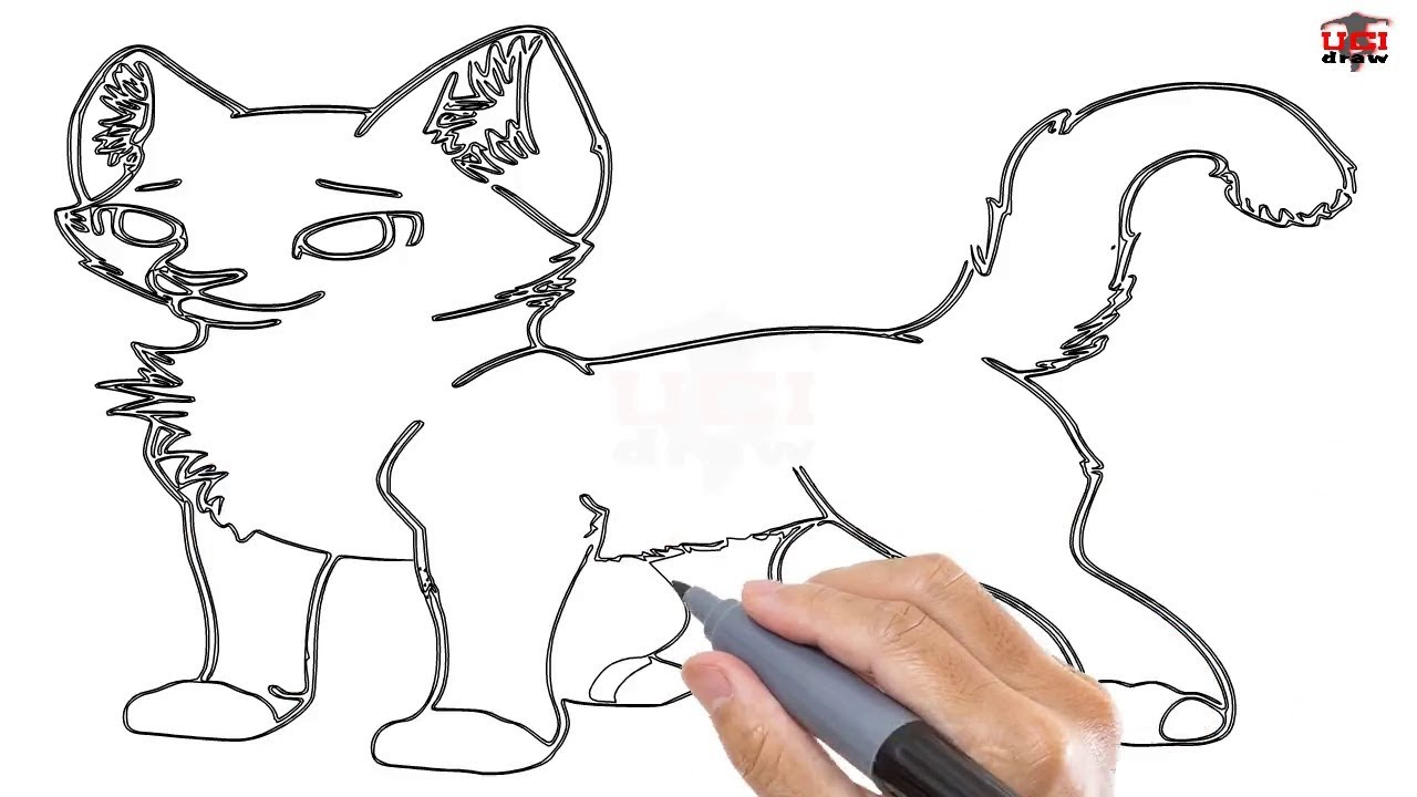 Uncategorized How To Draw A Small Cat how to draw a warrior cat easy step by drawing tutorials for kids ucidraw