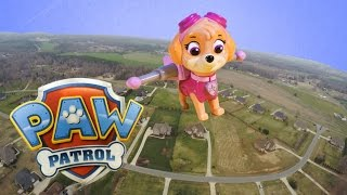 Skye Flies in the Air and Saves Paw Patrol Funny Video Parody