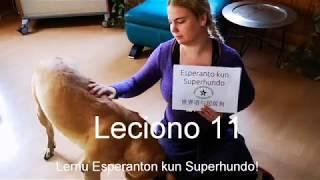 Lernu Esperanton kun Superhundo! – Leciono 11
