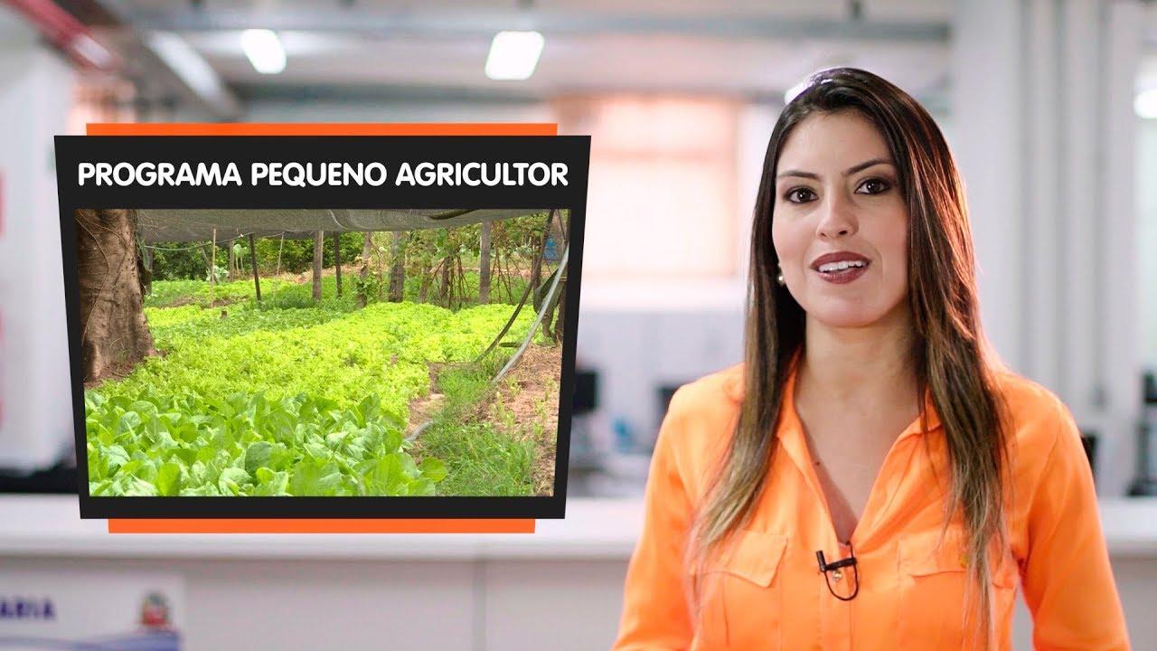 VEREADOR CÍCERO DO CEASA FAZ PROJETO PARA VALORIZAR AGRICULTURA