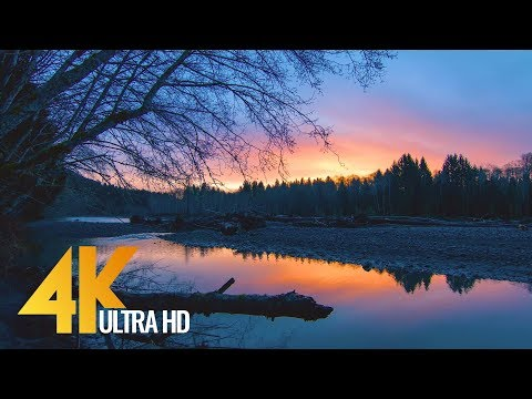 Sunrise at Hoh River - 4K Nature Relax Video - 1 HR for Relaxation, Destress and Restoration