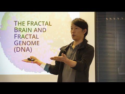 The Fractal Brain and Fractal Genome (DNA) - Wai h tsang