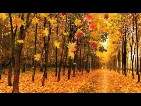 Песенку осень в золотой косынке