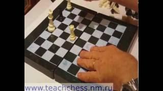 Фора 41. Урок 1. Как научить детей играть в шахматы
