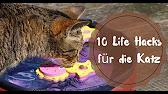 Kühlmatte für Hunde Cooldown von tiierisch.de - YouTube