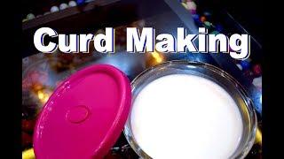 Microwave में दही ऐसे जमायें, मिलेगा परफेक्ट दही | Quick Curd Making in Microwave