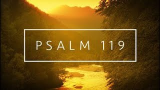 Psalm 119 // After his own heart \\ Thirsting for his ways W/Justin @ChristianTruthers thumbnail
