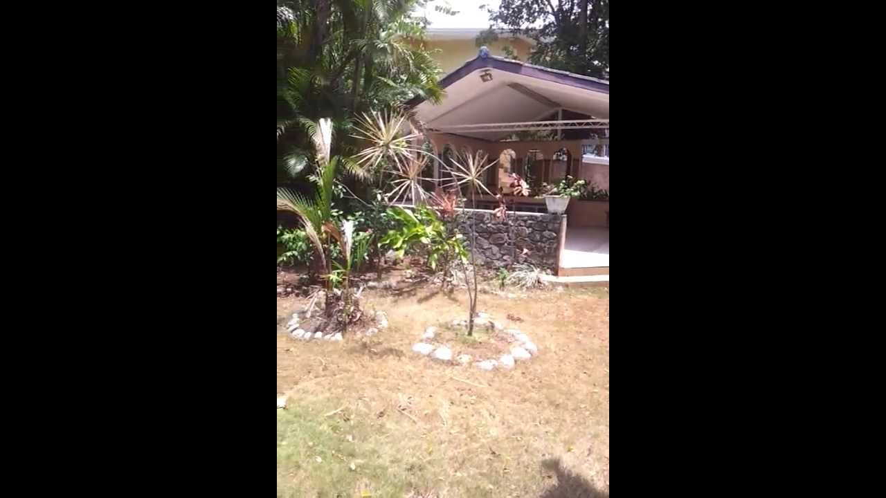 Terraza Techada Y Patio Trasero Casa Los Angeles Panamá