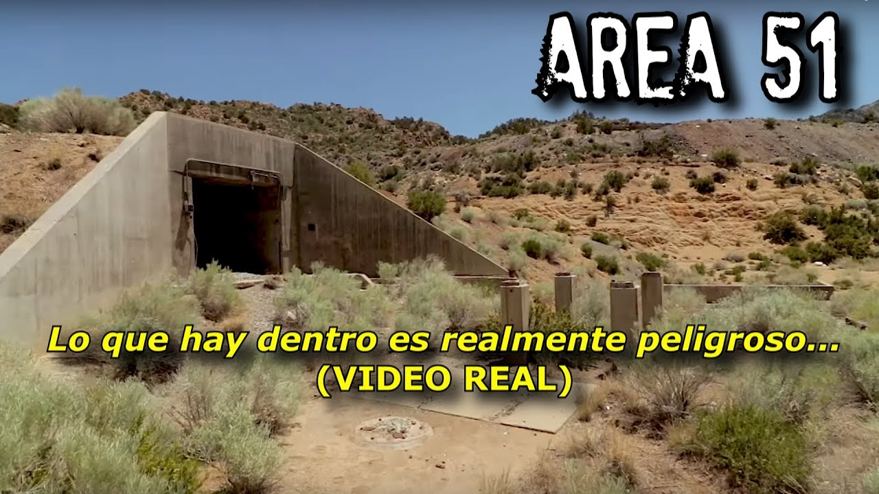 area 51 One rule to follow in hunting secret airplanes: avoid cows the highways that  border area 51, the us air force's secure flight-test base in nevada, are.