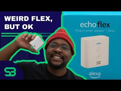Amazon Echo Flex Review