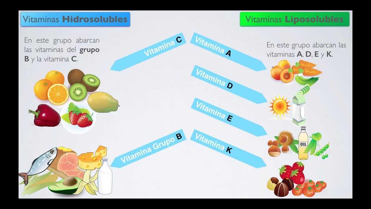 Vitaminas Hidrosolubles y Liposolubles (Videográfica