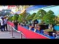 Gambar cover Bonsai Exhibition Vietnam -15th ASPAC - Asia Pacific Bonsai And Suiseki Bonsai Exhibition Part 1