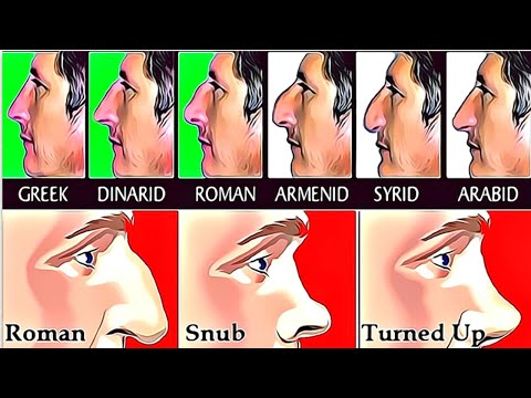8 types of nose shapes and what it says about your personality and future! personality tests