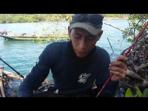 Pesca en boca del cielo chiapas