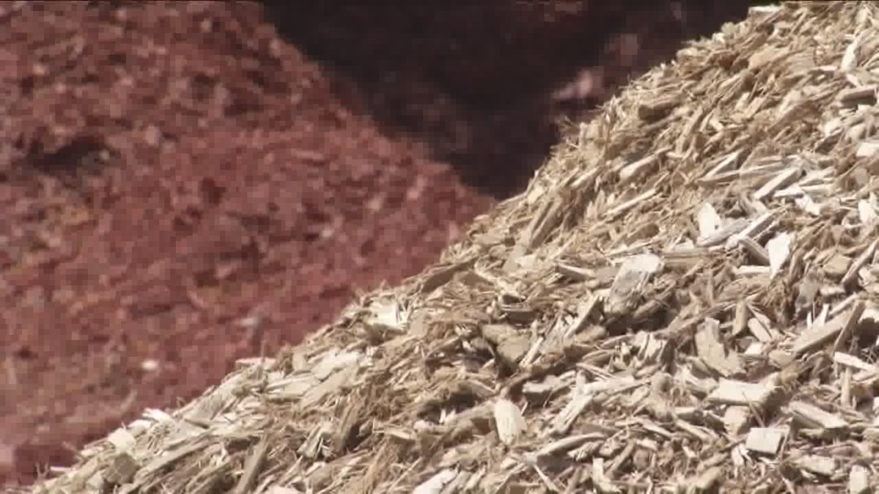 Which is better for your yard - wood chips or mulch? - Which Is Better For Your Yard - Wood Chips Or Mulch? - YouTube