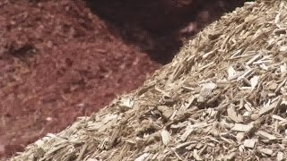 which is better for your yard wood chips or mulch?