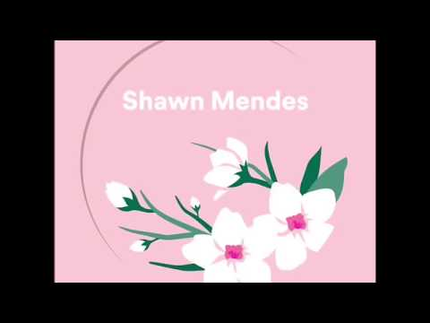 Shawn Mendes - Use Somebody Recorded at Spotify Studios (Acoustic version)