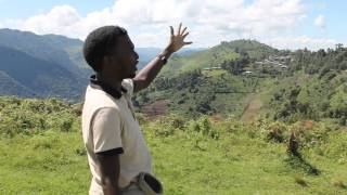 The Uganda travel Driver guide(The Uganda Guide at the Top Of the world view point in bwindi impenetrable national park.. Mountain Gorillas., 2015-05-05T16:21:15.000Z)