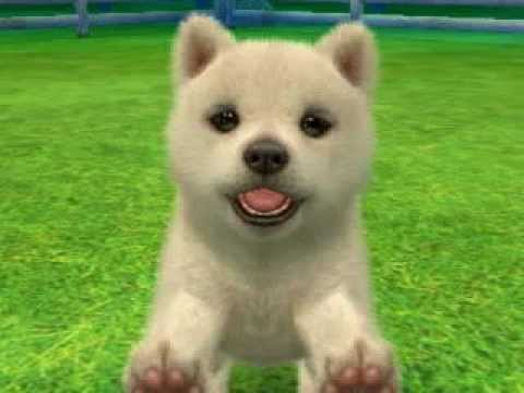 Nintendogscats For The White Puppies And Kitties Youtube