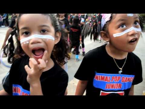 Animal Pop Family - Indonesia Dance Festival Day 3